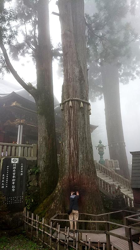 秩父三峯神社で最強パワーをもらって商売繫盛になろう