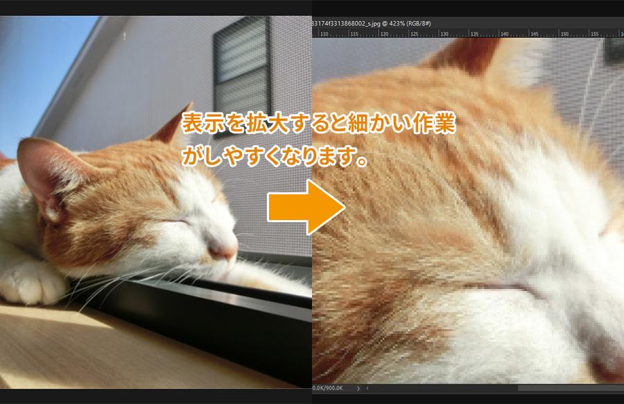 Photoshop フォトショップ 画像の拡大・縮小