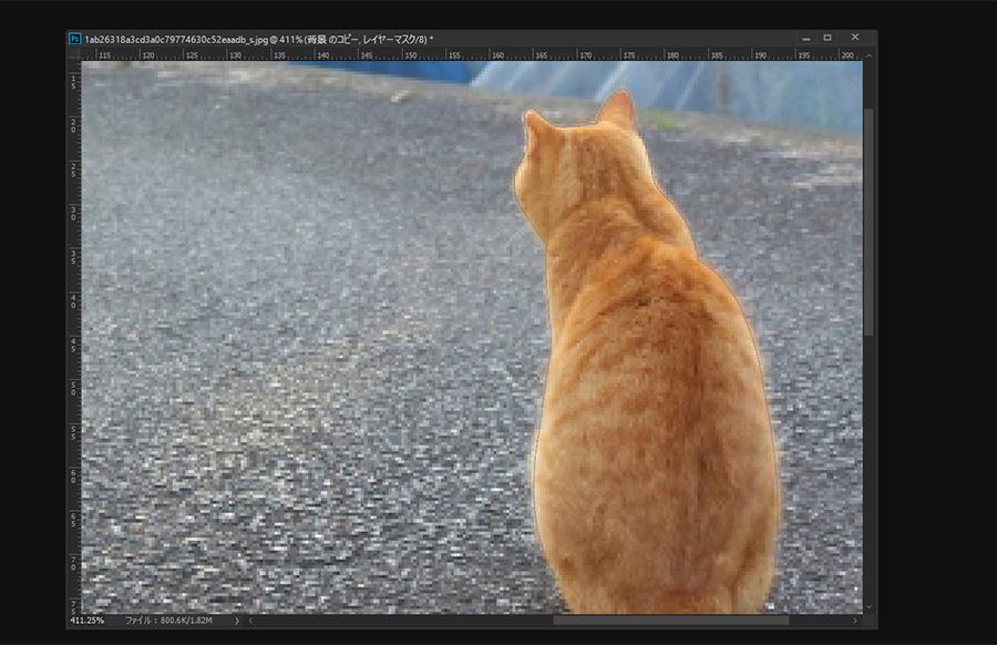 Photoshop レタッチ 猫