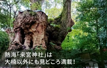 熱海「来宮神社」は大楠以外にも見どころ満載!