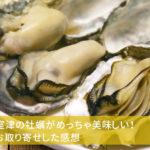 兵庫県室津の牡蠣がめっちゃ美味しい!通販でお取り寄せした感想