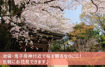 池袋・鬼子母神付近で桜を観るなら法明寺!手軽にお花見できます♪