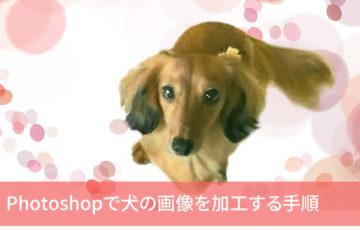 Photoshopで犬の画像を加工する手順
